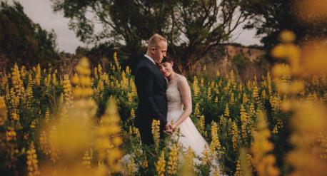Wedding Photos Palmerston North