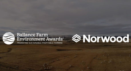 Ballance Farm Video Solution